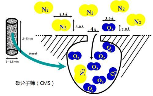 碳分子筛原理图